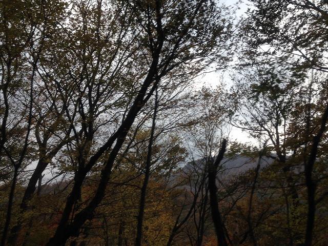 写真 2013-10-31 14 01 38