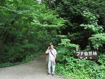 shirakamisanchi0815 (2)