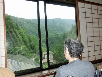 テレビより窓の外を見ていたい!
