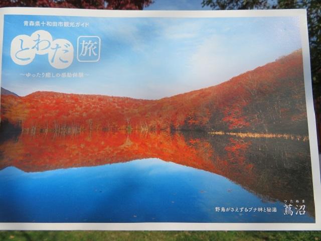 蔦沼の紅葉写真