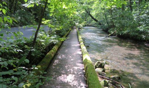 奥入瀬渓流遊歩道