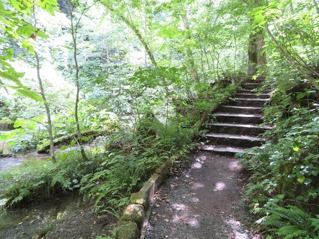 奥入瀬歩道階段